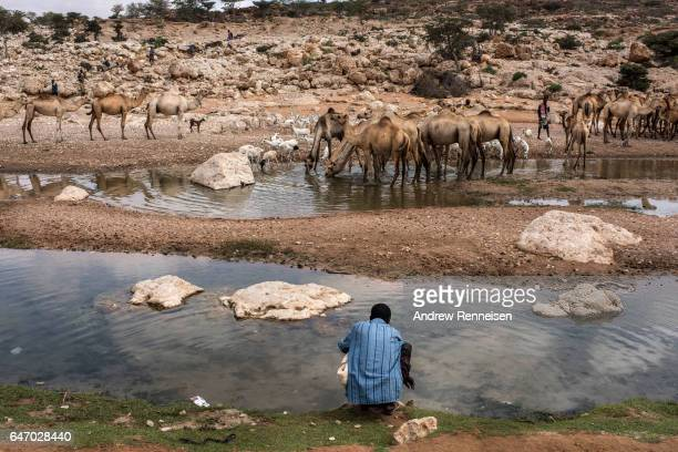 A man draws water from a nearly dried up riverbed on February 24 2017 in Dhudo Somalia People travel up to 75 kilometers to get water as it is one of...
