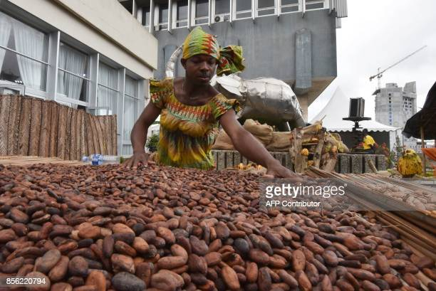 A man dressed as a woman in a traditional garment selects cocoa beans on the closing day of the national cocoa and chocolate days on October 1 2017...