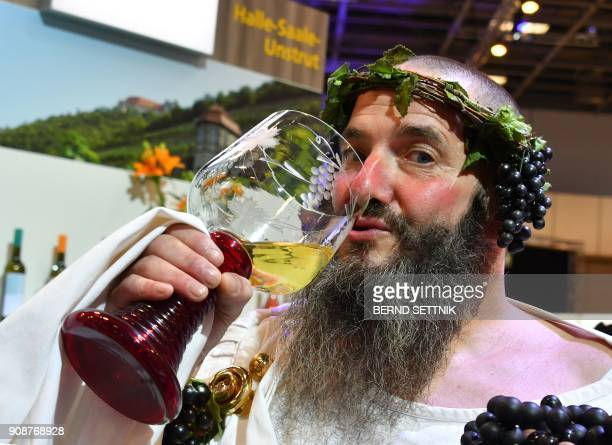 A man dressed as the god of wine Bacchus drinks wine during the International Green Week agricultural fair in Berlin on January 22 2018 The fair...