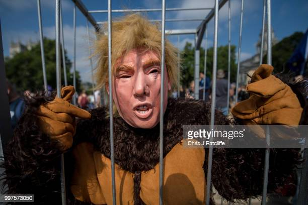 A man dressed as the US President in a gorilla costume as demonstrators raise a six meter high effigy of Donald Trump being dubbed the 'Trump Baby'...