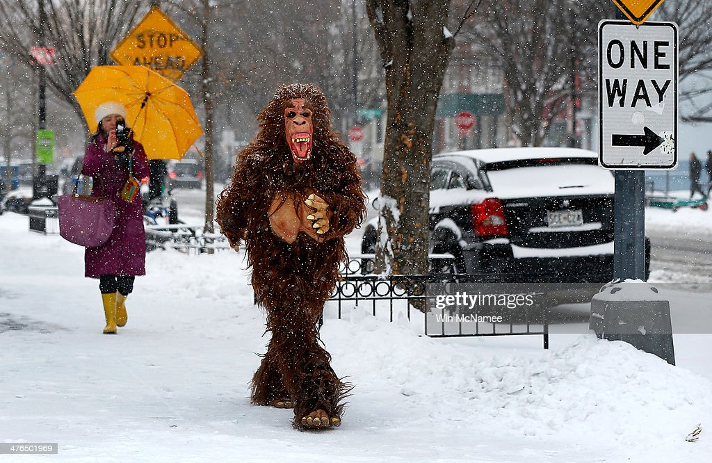 A man dressed in a gorilla costume walks along a snowy 19th Street, NW March 3, 2014 in Washington, DC. The Washington area has been hit by repeated snow storms throughout the winter.
