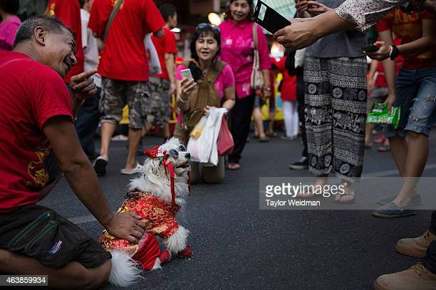 A man dresses his dog in a traditional costume during Chinese New Year on February 19 2015 in Bangkok Thailand February 19 marks the first day of the...