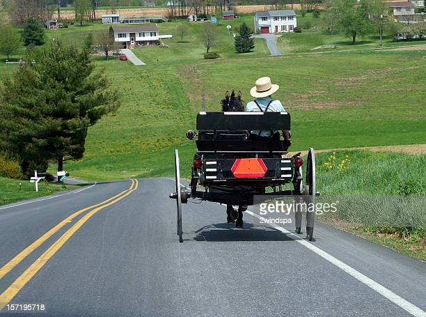 a man driving an amish buggy down a sloping road - animal powered vehicle stock photos and pictures