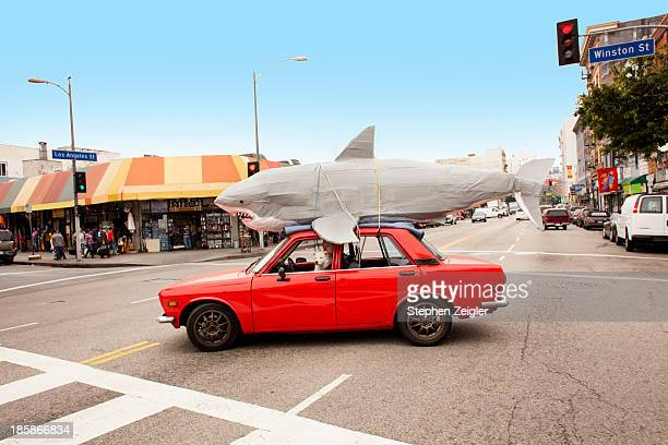 man driving car with papier-mache shark on roof - individuality stock pictures, royalty-free photos & images