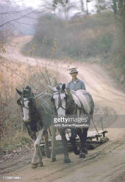 A man driving farm horses on a dirt road Pike County Kentucky US 1967
