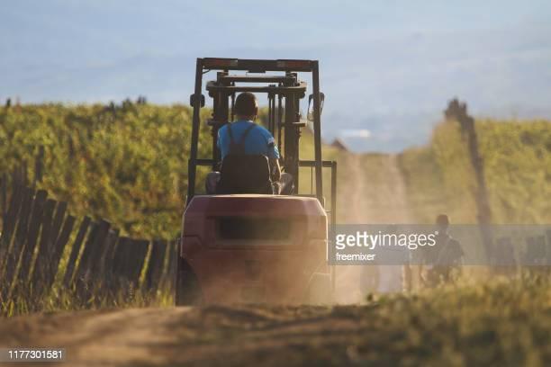 homme conduisant le chariot élévateur sur le chemin de terre parmi des vignobles - serbie photos et images de collection