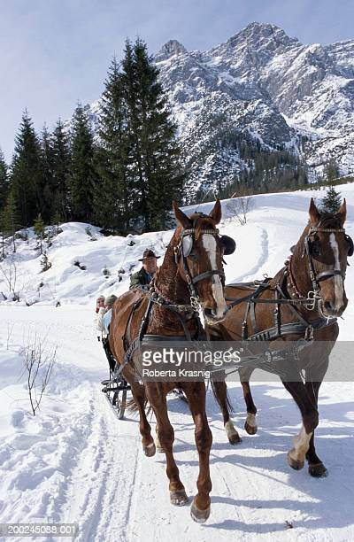 man driving horse and carriage with young couple - animal powered vehicle stock photos and pictures