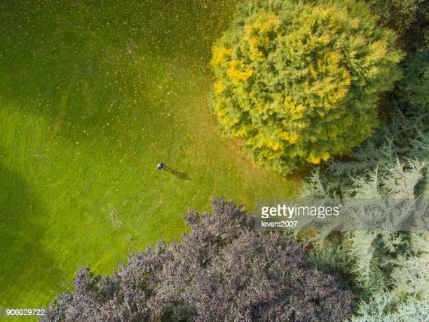 Mann in einem Waldgebiet, Dublin, Irland dröhnen.