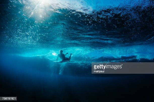 Man Duck Diving under a wave, Hawaii, America, USA