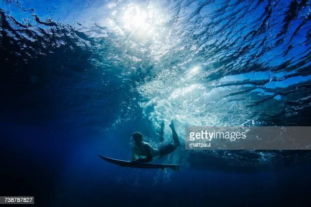 Man Duck Diving under a wave, Hawaii, America, USA