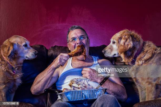 man eating the last turkey dinner drumstick on couch as 2 dogs watch - funny turkey images stock photos and pictures