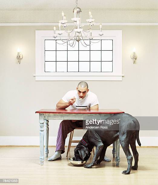 man eating with his dog - dog eating stock photos and pictures