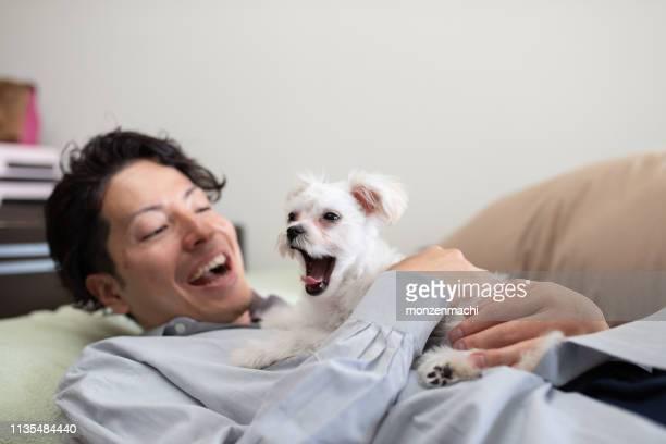 部屋に子犬を抱きしめる男 - あくび ストックフォトと画像