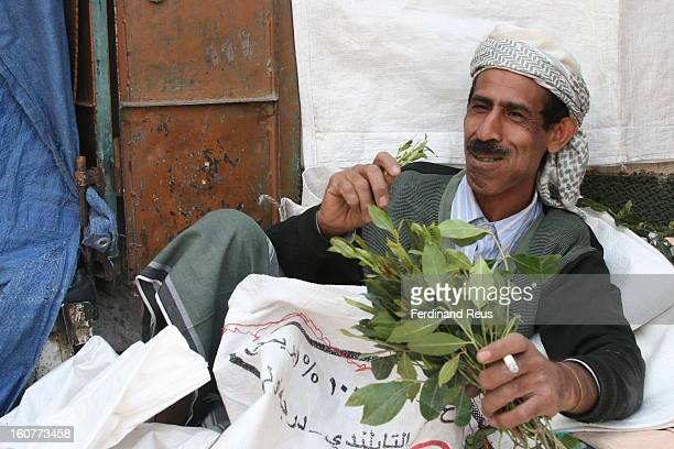 CONTENT] Man enjoying his qat in Sana'a Yemen January 2009 Qat is a large slow growing evergreen shrub reaching a height of between 1 and 6 meters in...