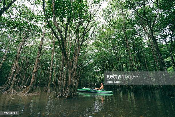 Man enjoying mangrove kayaking, Ishigaki Island, Japan