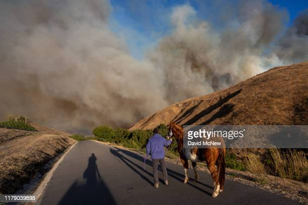 Man evacuates horses as the Easy Fire approaches on October 30, 2019 near Simi Valley, California. The National Weather Service issued a rare extreme...