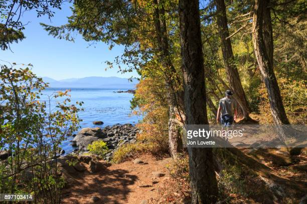 man exploring the coastal trail with view of olympic mountains - pacific ocean stock photos and pictures