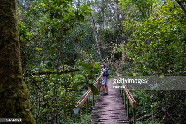 man exploring the outdoors - western cape province stock pictures, royalty-free photos & images