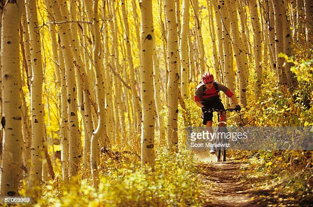 man fall mountain biking in park city, utah. - park city utah stock pictures, royalty-free photos & images