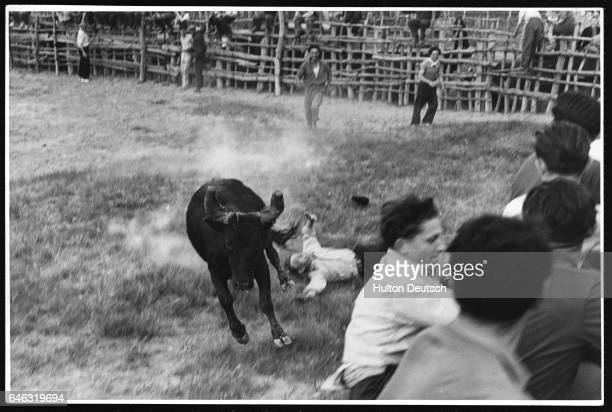 A man falls as the bull charges around the arena Other men leap on to the arena barrier
