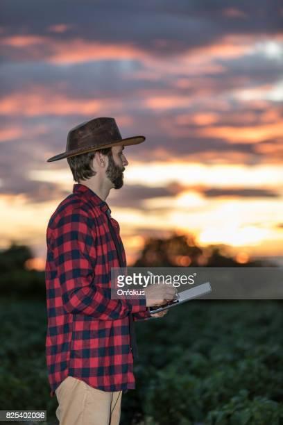 Mann-Bauer mit Digital-Tablette in Feld bei Sonnenuntergang