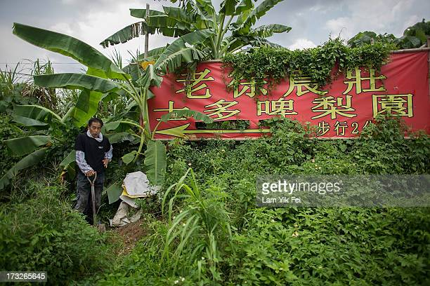A man farms at Ping Che Village on July 11 2013 in Hong Kong China The North East New Territories New Development Areas project proposed by HKSAR...
