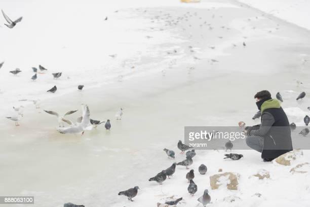 Man feeding birds at winter