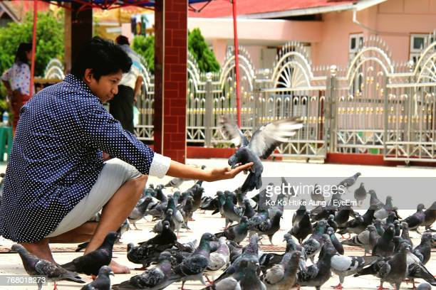 man feeding pigeons at temple - ko ko htike aung stock pictures, royalty-free photos & images
