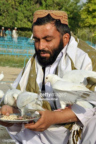 CONTENT] Man feeding the famous white pigeons Shrine of Hazrat Ali MazarISharif Balkh province Afghanistan