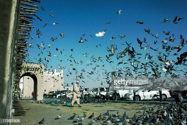 Man feeding the pigeons in Souq Waqif in Doha, Qatar.