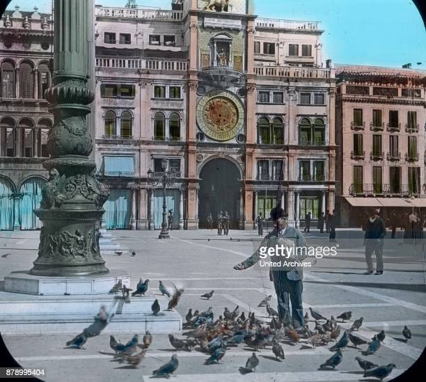 A man feeding the pigeons in Venice