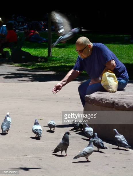 A man feeds the wild pigeons in the historic Plaza in Santa Fe New Mexico