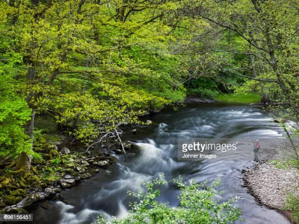 man fishing in river - stroomversnelling stockfoto's en -beelden