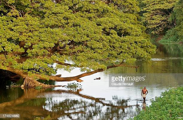 CONTENT] A man fishing in the river Cauvery in Dharasuram a lovely little town where you can see one of the most beautiful temple in Tamil Nadu