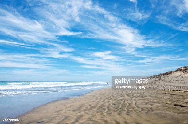 man fishing on ninety mile beach, north island, new zealand - northland new zealand stock pictures, royalty-free photos & images