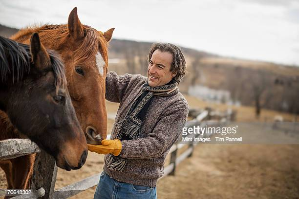 A man fixing a post and rail fence around a horse paddock.