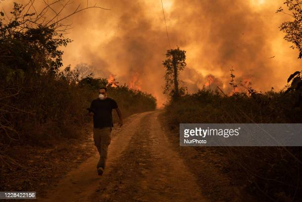 Man flee of out of control forest fire burns the area of the Brazilian Pantanal in rural Pocone, Mato Grosso, Brazil, on August 19, 2020 in the...