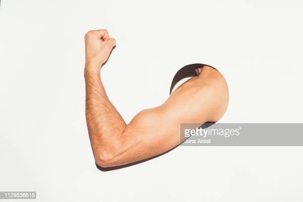 man flexing muscle, determination, strength, fitness, muscle, bicep, confidence, masculinity, muscle man - muskel stock-fotos und bilder