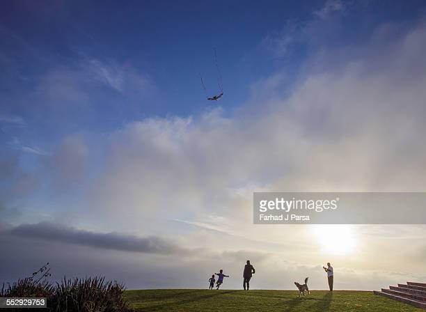 man flies kite as family play on lawn - mid distance stock pictures, royalty-free photos & images