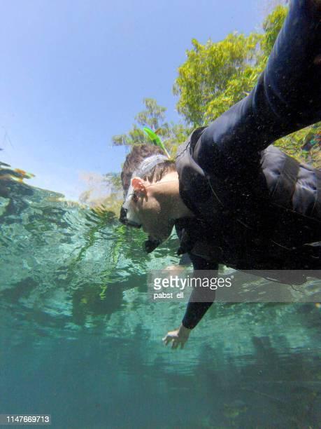 homem que flutua snorkeling no rio da prata rio de bonito - pessoas bonitas - fotografias e filmes do acervo