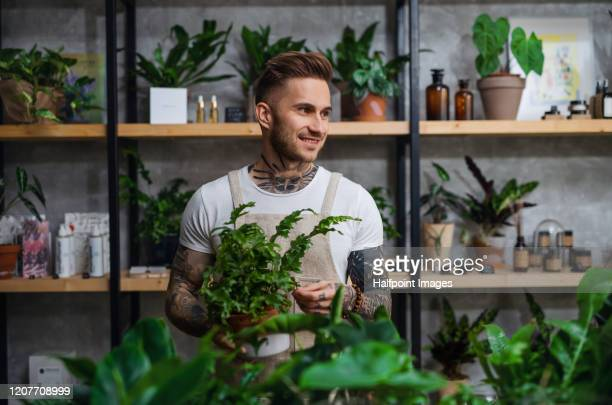 man florist standing in flower and plant shop, holding a plant in a pot. - small business stock pictures, royalty-free photos & images