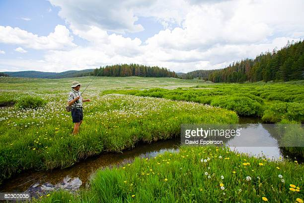 man fly fishing colora - steamboat springs colorado - fotografias e filmes do acervo