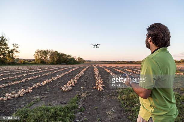 man flying a drone  over an onions field - remote controlled stock photos and pictures
