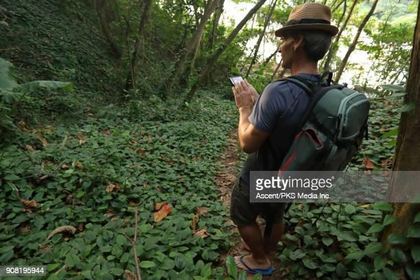 Man follows forest track through jungle
