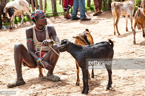 a man from the bana tribe selling his goats. key afer, omo valley, ethiopia - 木曜日 ストックフォトと画像