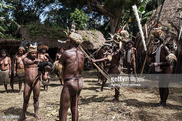 Man from the Dani kills a pig with bow and arrow at Obia Village on August 9, 2014 in Wamena, Papua, Indonesia. The Dani tribe live a traditional...
