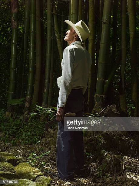 man grooming the forest - las posas stock pictures, royalty-free photos & images