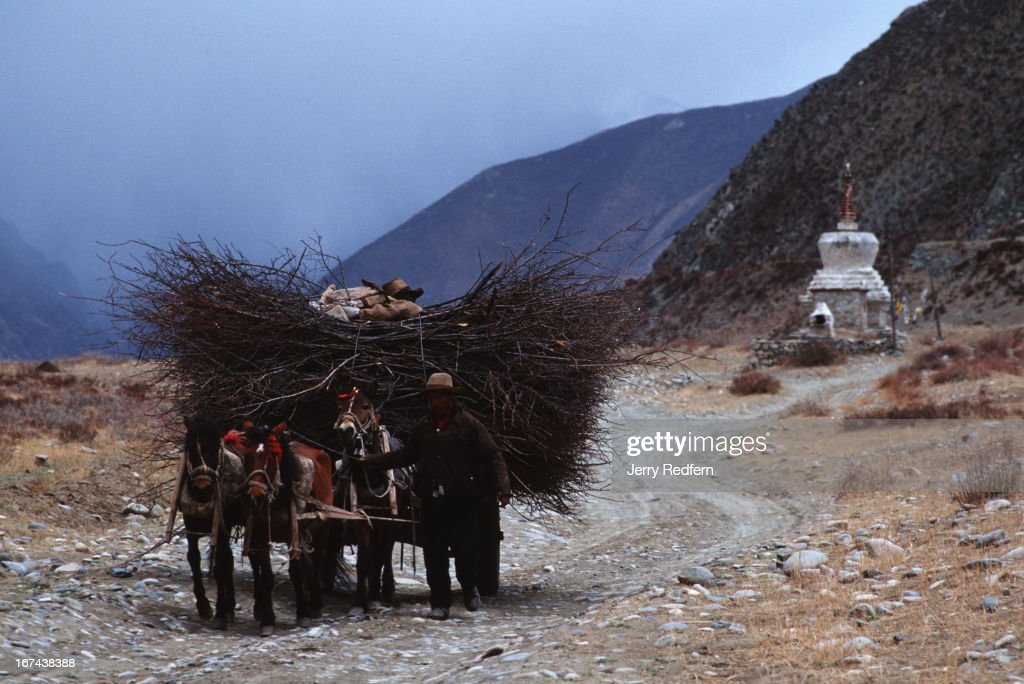 A man guides his horse-drawn cartload of sticks past a roadside stupa as a rainstorm approaches..