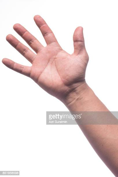 man hand isolated on white background, clipping path - palma da mão imagens e fotografias de stock