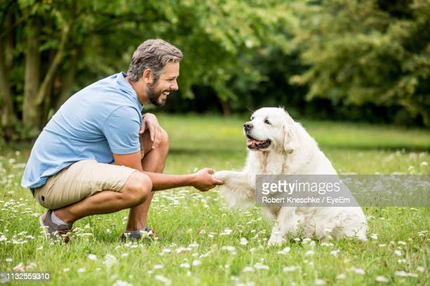 man handshaking with dog in park - solo un uomo foto e immagini stock